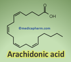 Arachidonic acid Prostaglandins and inflammation: The PGs effects and functions